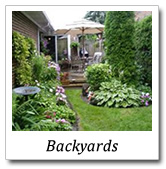 backyards landscape