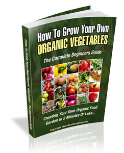 organic farming vegetables guide